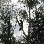 <b>Удаление деревьев любой сложности</b>